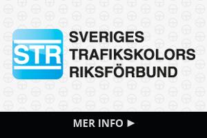 Sveriges Trafikskolor Riksförbund
